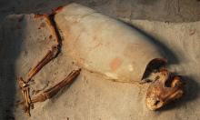 Phát hiện nghĩa địa Ai Cập cổ chôn gần 600 chó mèo