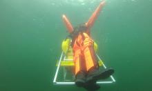 Robot lặn dưới nước có thể ngoi lên cứu người