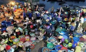 Chợ cá họp lúc 1h sáng ven vịnh Bái Tử Long