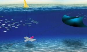 Hệ thống sản xuất điện bằng diều dưới nước