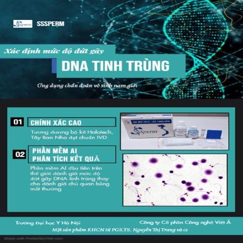 Bộ kit xác định mức độ đứt gãy DNA tinh trùng ứng dụng trong chẩn đoán vô sinh nam