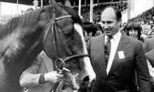 Cuộc bắt cóc bí ẩn con ngựa đắt nhất thế giới