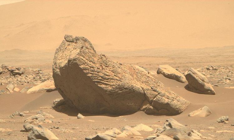 Tảng đá rộng 2 m giống hải mã trên sao Hỏa