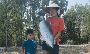 Câu chuyện nuôi heo và cách đầu tư của con trai