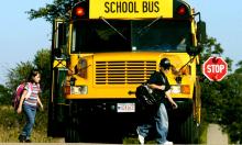 Vì sao xe buýt chở học sinh ở Mỹ chỉ dùng màu vàng
