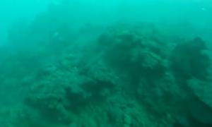 Cánh đồng dung nham 320.000 m2 dưới đáy biển